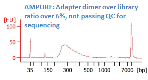after DNA sizing purification with AmPure XP (dimer ratio > 6%)