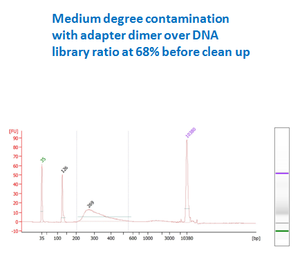 medium contamination DNA library before purification (dimer ratio 68%)