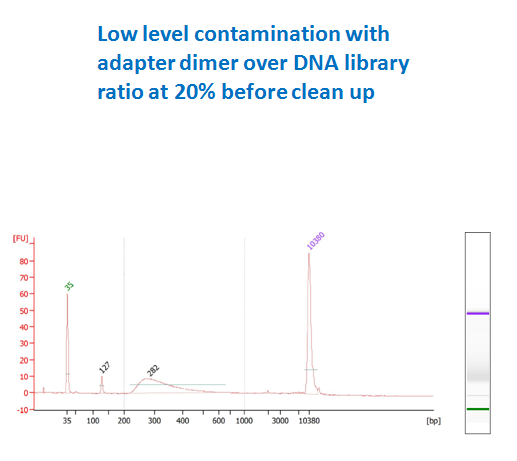 low contamination DNA library before purification (dimer ratio 20%)