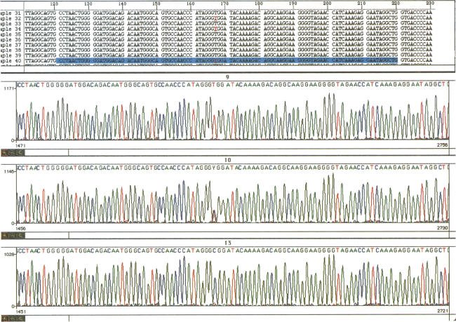 sequencing-traces-from-double-stranded-spri-purified-pcr-products