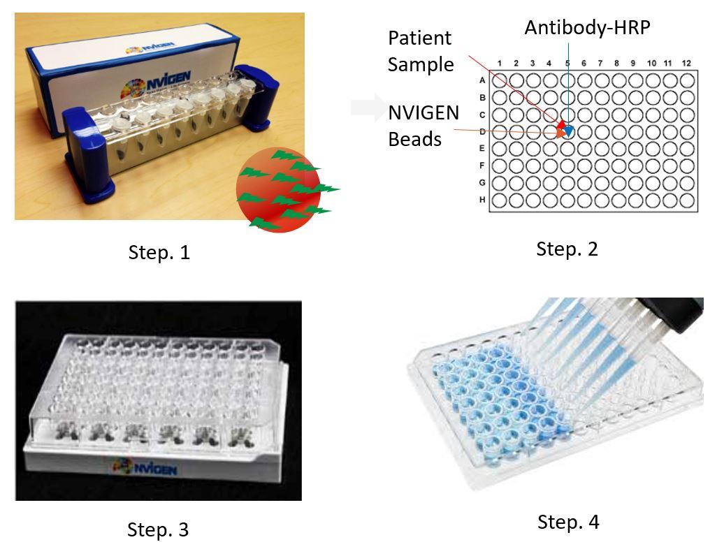 nvigen-sars-cov-2-testing-on-beads-elisa-workflow-illustration